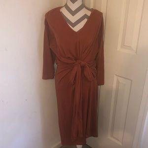 Zara Tie Front Dress